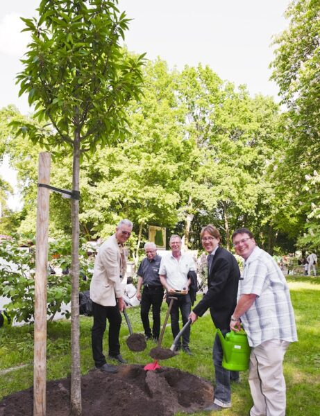 Ess-Kastanie wurde als 30. Baum des Jahres für Neuköllner Baumlehrpfad gepflanzt 1
