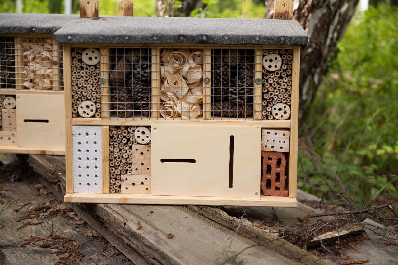 Umweltbildung ist Herzenssache - Insektenhotels an Neuköllns Schulen ausgeliefert 2